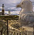 Gull Point 2015 by Kathryn Strick