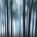 Gum Trees by Noelene Kuzman