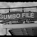Gumbo File by Linda Kish