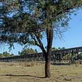 Gundagai Rail Viaduct 05 by Werner Padarin