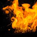 Gunpowder Flames by Michele James
