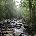 Gurgling Brook Smoky Mountains National Park by NaturesPix