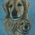 Gussy Before And After by Debbie Stonebraker