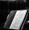 Gustav Mahler Symphony No 1 by Marco Oliveira