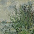 Gustave Loiseau 1865 - 1935 Willows, Edges Oise Or On The Banks Of The Oise by Adam Asar