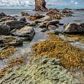 Gwenfaens Rock by Adrian Evans