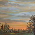 Gwinnetian Sunset by Pete Maier