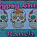 Gypsy Chix Ranch by Debra Martz