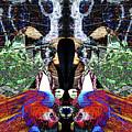Gypsy Stalker by Revantide Afterburner