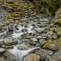 Haast Waterfall by Andrea Cadwallader