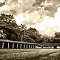 Hacienda La Elvira by Galeria Trompiz