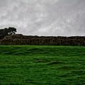 Hadrian's Wall by John Kenealy