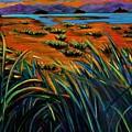 Haida Gwaii Sunrise by Faye Dietrich