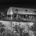 Hainesville Barn B/w by Robert Storost