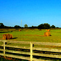 Hale Bales In Late Summer by Michael Potts