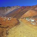 Haleakala Sliding Sands Volcano Trail Silverswords by John Burk