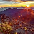 Haleakala Sunrise by Joy McAdams