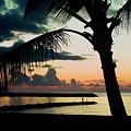 Haleiwa by Steven Sparks