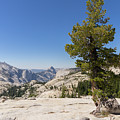 Half Dome And Yosemite Valley From Olmsted Point Tioga Pass Yosemite California Dsc04274 by Wingsdomain Art and Photography