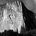 El Capitan - Yosemite, Ca by Larry Day