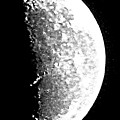 Half Moon by Barbara Henry