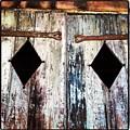Hall Doors by Artie Rawls