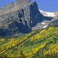 310221-v-hallet Peak In Autumn V  by Ed  Cooper Photography