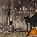Halloween 2 by Filippo Ioco
