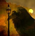 Halloween Is Over by Susanne Van Hulst