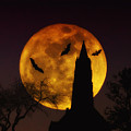 Halloween Moon by Bill Cannon