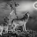 Halloween - Spirits Of The Wolf by Wildlife Fine Art