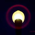 Halo Of Light by Donna Blackhall