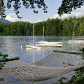 Hammock On Lake Winnipesaukee, Nh by Deborah Squires