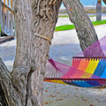 Hammock Time In The Florida Keys by Ginger Wakem