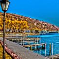 Hammondsport Waterfront by William Norton