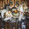 Hampton Carousel by Williams-Cairns Photography LLC