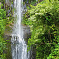 Hana Waterfall by Frank Testa