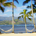 Hanalei Bay, Hammock by Kyle Rothenborg - Printscapes
