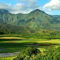 Hanalei Valley Rainbow by Stephen Vecchiotti