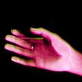 Hand by Irina Lesch