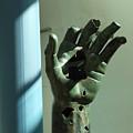 Hand by Nikola Ralevic