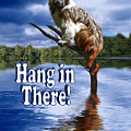 Hang In There by Gravityx9  Designs