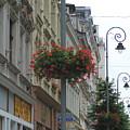 Hanging Basket by Karen Granado