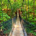Hanging Bridge by Ester  Rogers