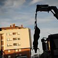 Hanging Bull by Rafa Rivas