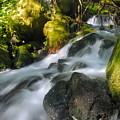 Hanson Falls by Larry Ricker