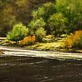 Lewis River Lagoon by Jim Gola