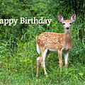 Happy Birthday 1 by Marty Koch