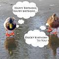 Happy Birthday To You by Ausra Huntington nee Paulauskaite