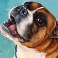 Happy Boxer Dog by Dottie Dracos